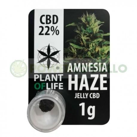 EXTRACTO CBD JELLY 22% AMNESIA HAZE (PLANT OF LIFE) 0