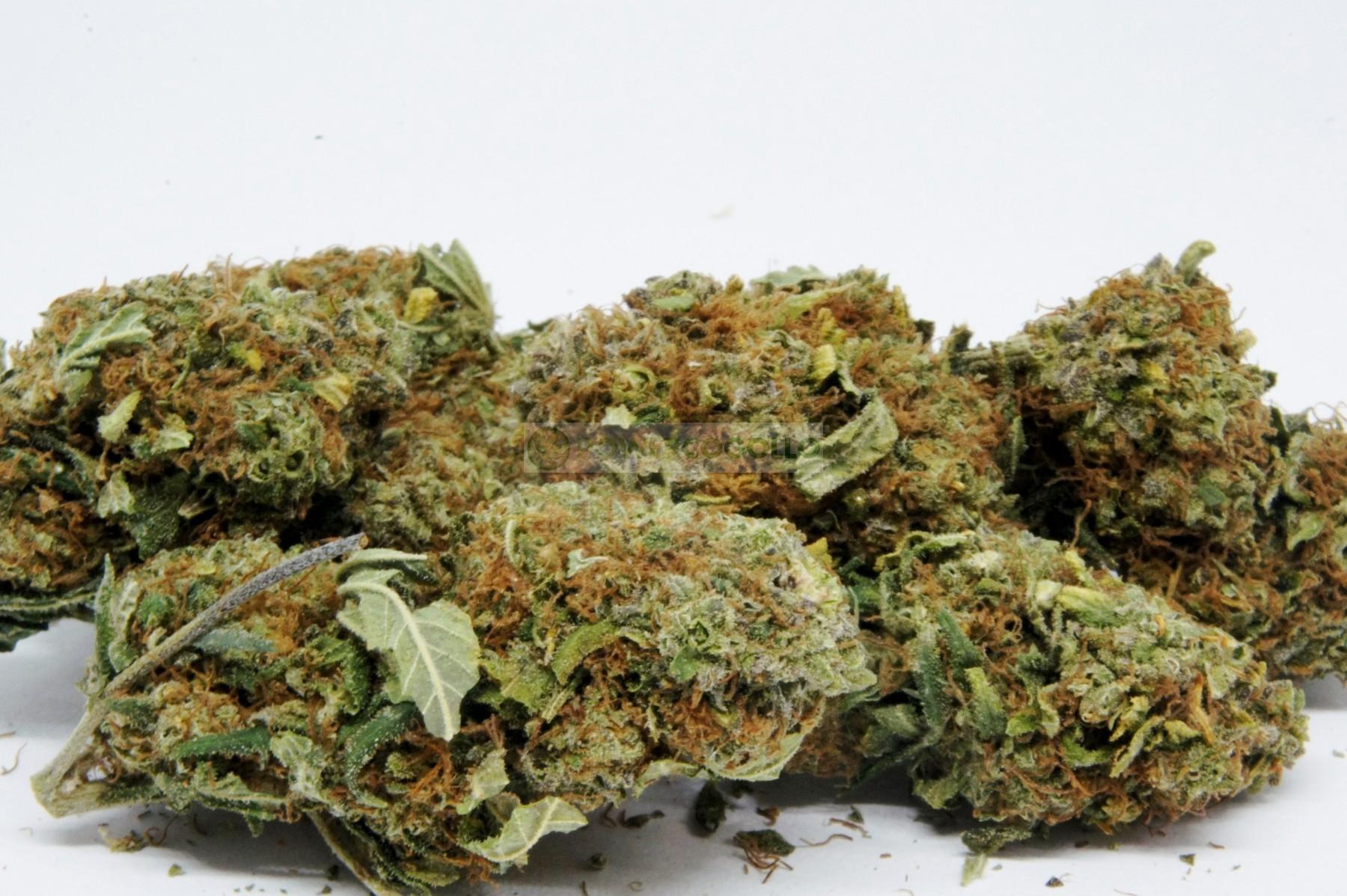 Flores CBD Orange #1(TerpeScience) 1