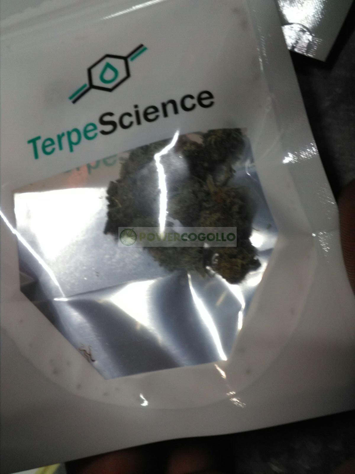 Flores CBD (TerpeScience) 3