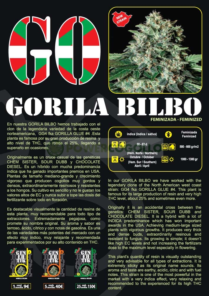 Gorila Bilbo Feminizada (Genehetik Seeds) 1
