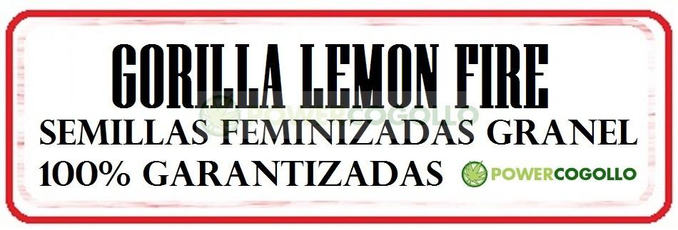 Gorilla Lemon Fire Semilla Feminizada Granel 0
