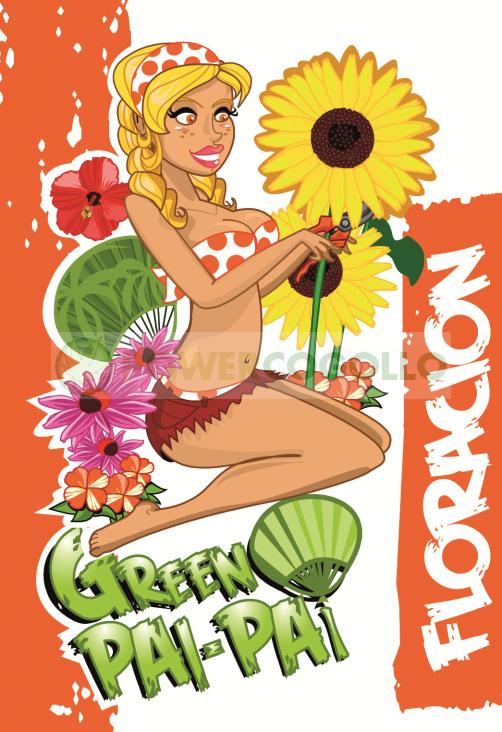 Green Pai-Pai Floración 0