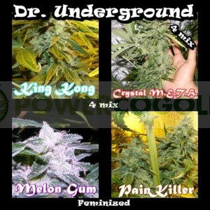 Killer Mix 4 (Dr. Underground Seeds) Pack 4 Semillas Feminizadas Cannabis 0