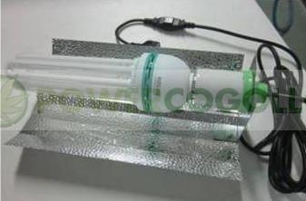Equipo 150 w CFL PowerPlant Crecimiento Bajo Consumo 1
