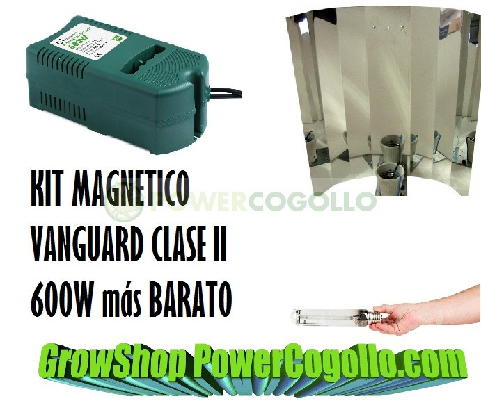 KIT 600W MAGNETICO VANGUARD CLASE II PLUG&PLAY 1