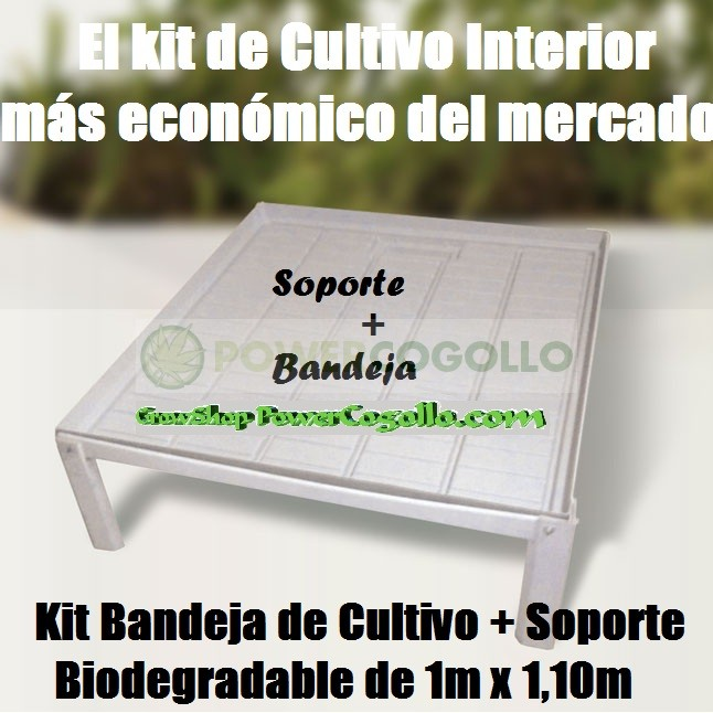 Kit Bandeja de Cultivo + Soporte Biodegradable  0