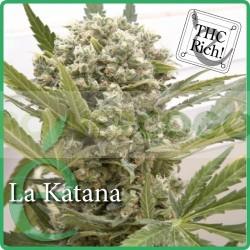 La Katana (Elite Seeds) Semilla Feminizada  1