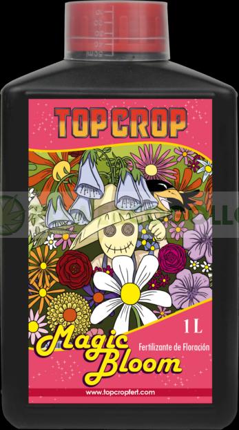 top bloom, top crop, floracion 0