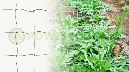 Malla de Cuadros Sea of Green cultivo cannabis 0
