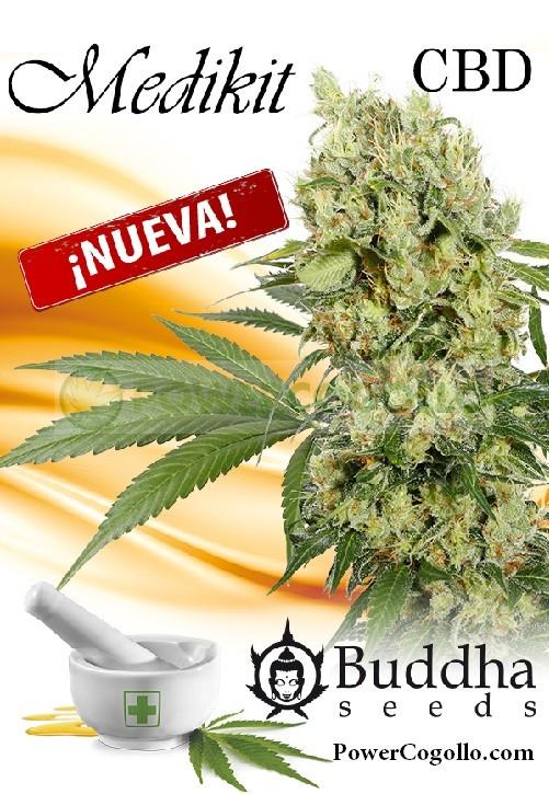 Medikit CBD (Buddha Seeds) 0