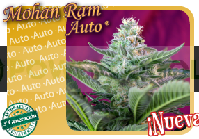 Mohan Ram Auto 3G 0