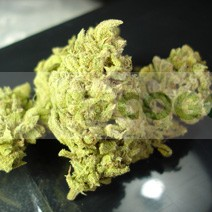 No Name (Medical Seeds) Feminizada marihuana 0