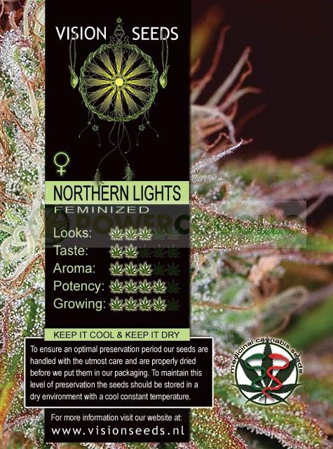 Northern Lights (Vision Seeds) Semilla Cannabis Feminizada 1