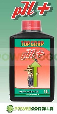 PH + Up (Top Crop)  0