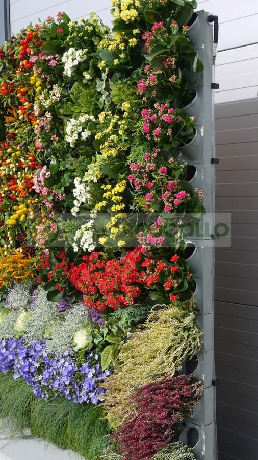 Jardín Vertical Pixel Garden  2