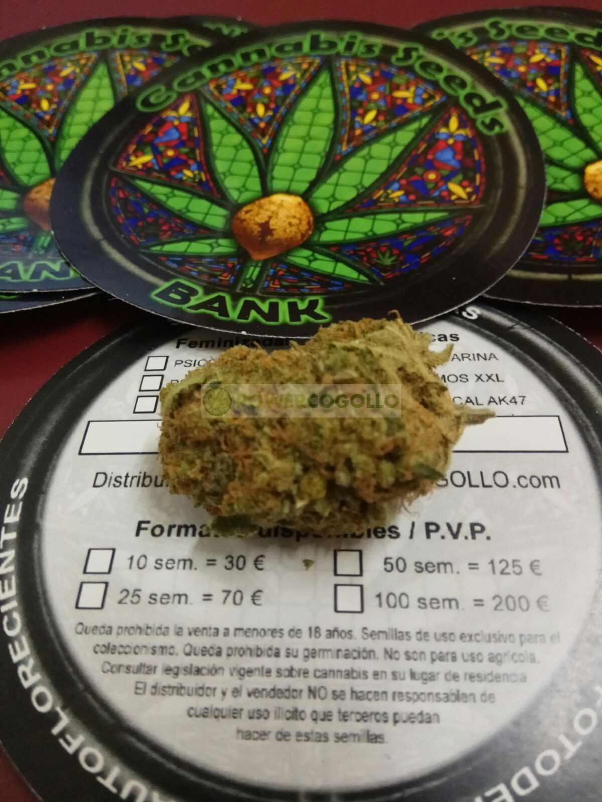 Psico Soma (Cannabis Seeds) Feminizada 2