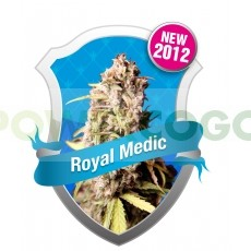 Royal Medic CBD Feminizada (Royal Queen Seeds) 0