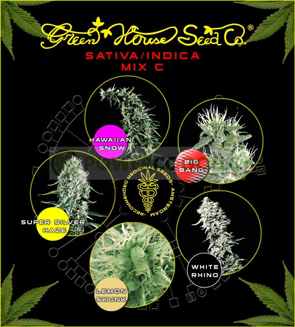 Sativa/Indica Mix C (Green House Seeds) 1