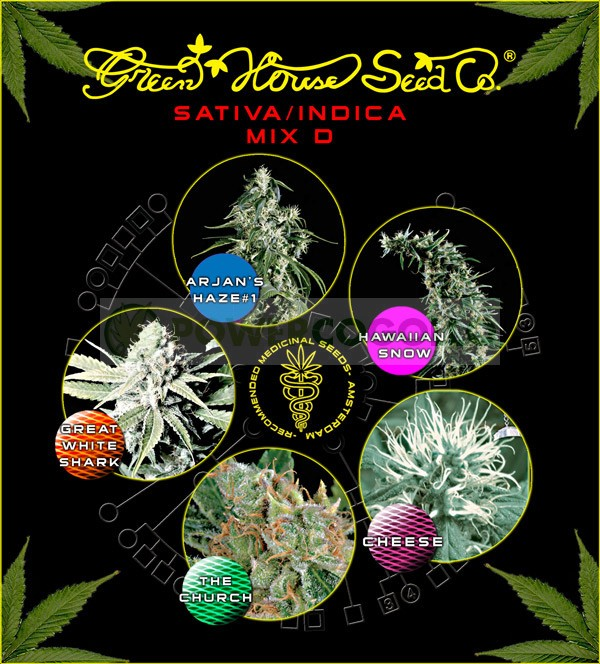 Sativa/Indica mix D (Green House Seeds) 1