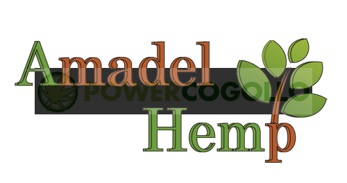 Semillas de Cáñamo Sin Pelar 250gr (Amadel Hemp) 1