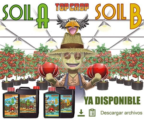 Soil A+B (Top Crop)  0