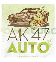 Ak 47 Auto 30 unds (Speed Seeds) Semilla Feminizada Autofloreciente Cannabis   Encuentra las mejores semillas feminizadas de Speed Seeds en nuestras tiendas PowerCogollo.com tu GrowShop más Barato Ak 47 Auto 30 unds (Speed Seeds) Variedad: Híbrido Autoflo 0