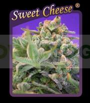 Sweet Cheese 0