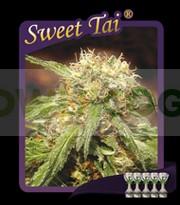 Sweet Tai  0