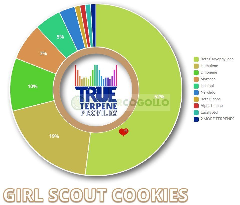 TERPENOS GIRL SCOUT COOKIES (TRUE TERPENE) 1