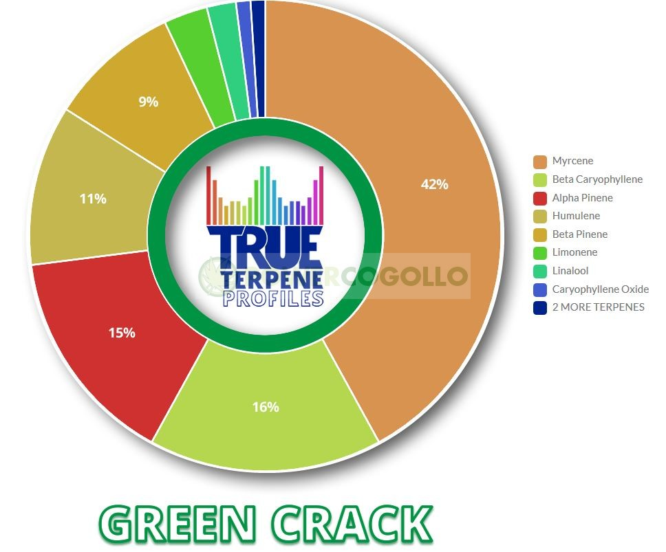 TERPENOS GREEN CRACK (TRUE TERPENE) 0