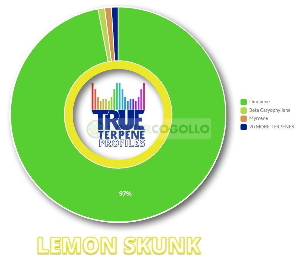 TERPENOS LEMON SKUNK (TRUE TERPENE) 0
