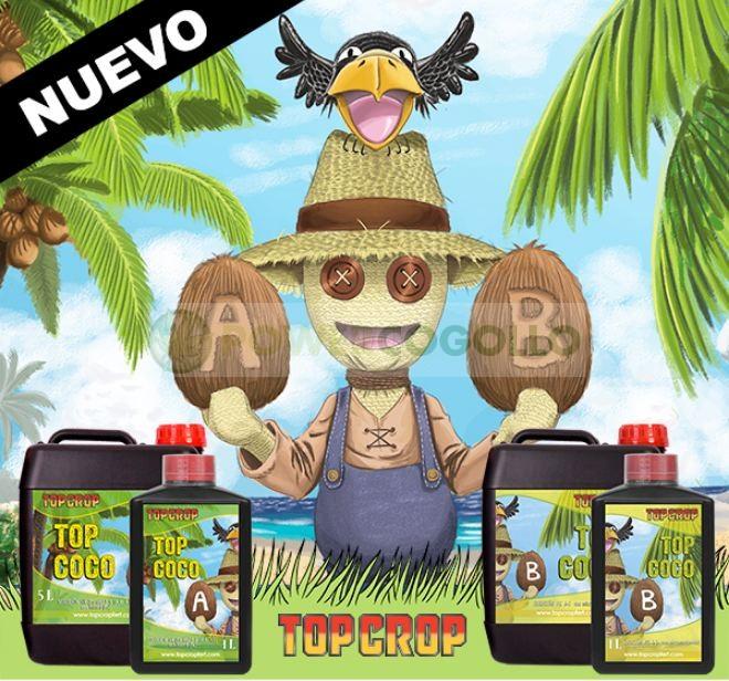 Top Coco A+B (Top Crop) 0