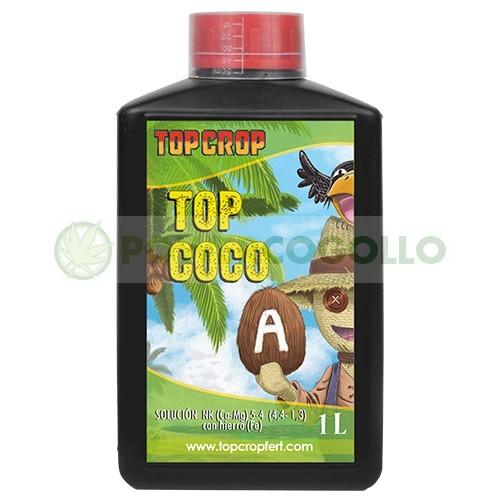 Top Coco A (Top Crop) 2