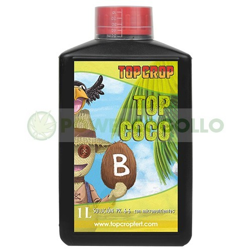 Top Coco B (Top Crop) 1