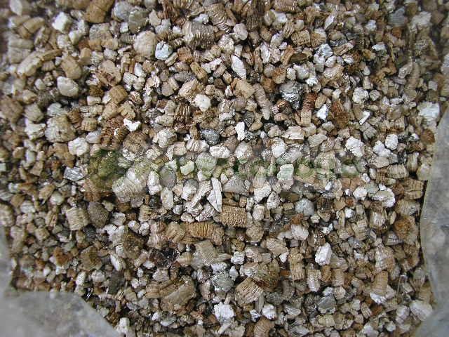 Vermiculita Bolsa 3 Litros 0
