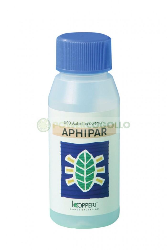 Aphipar (Aphidius Colemani Contra Pulgón)
