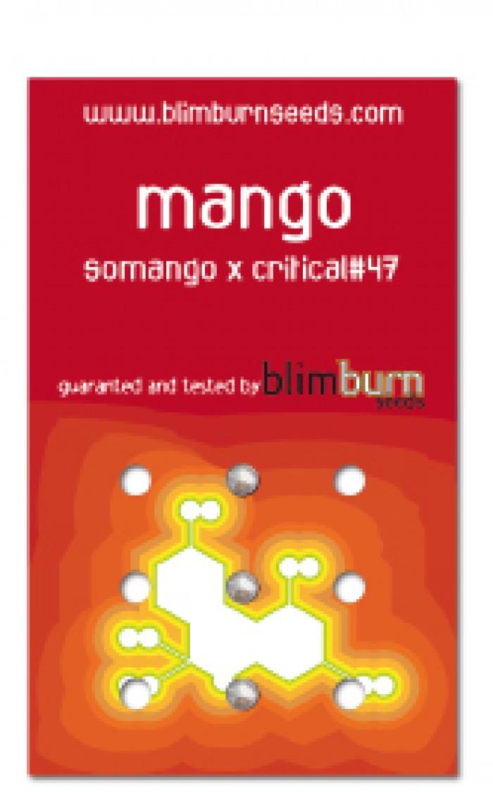 Mango (Blim Burn Seeds) Semilla feminizada Marihuana