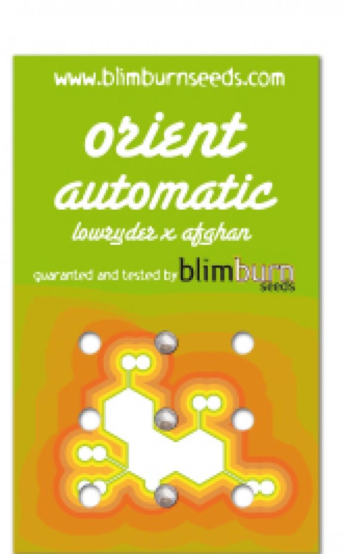 Orient Automatic 3 Semillas