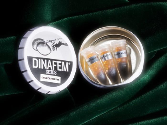 Semillas Edición coleccionista #12 de Dinafem
