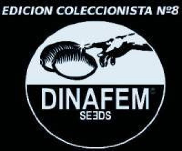 Edición Coleccionista #8 (Dinafem) 6 Semillas Feminizadas