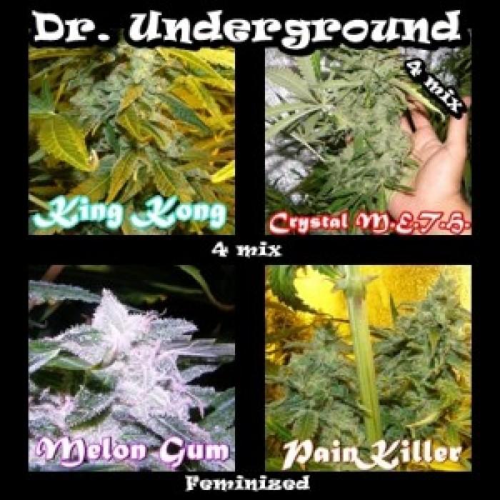 Killer Mix 4 (Dr. Underground Seeds) Pack 4 Semillas Feminizadas Cannabis