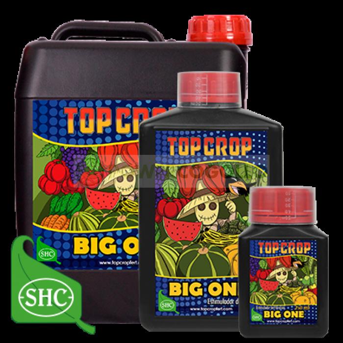 Big One estimulador de floración de Top Crop