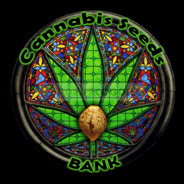 Psico Rica (Cannabis Seeds) Feminizada