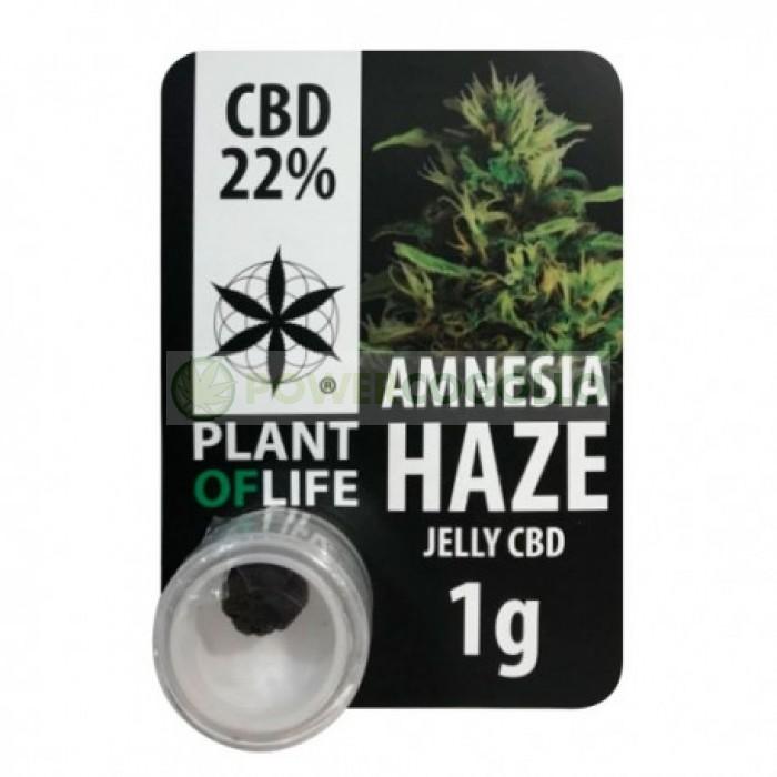 EXTRACTO CBD JELLY 22% AMNESIA HAZE (PLANT OF LIFE)