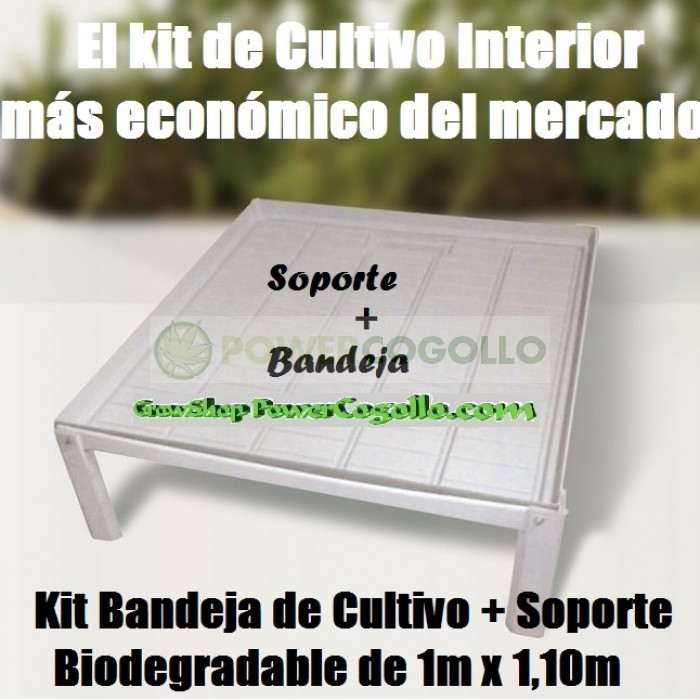 Kit Bandeja de Cultivo + Soporte Biodegradable