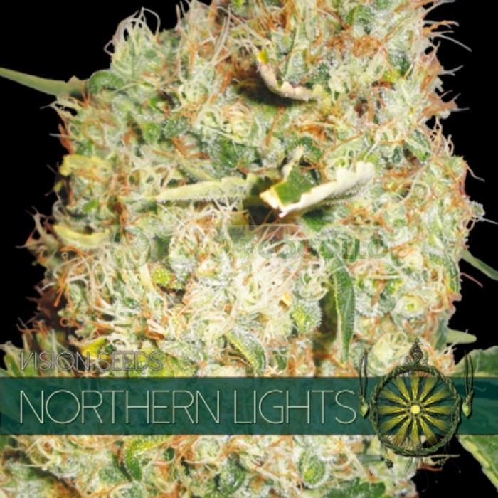 Northern Lights Vision Seeds