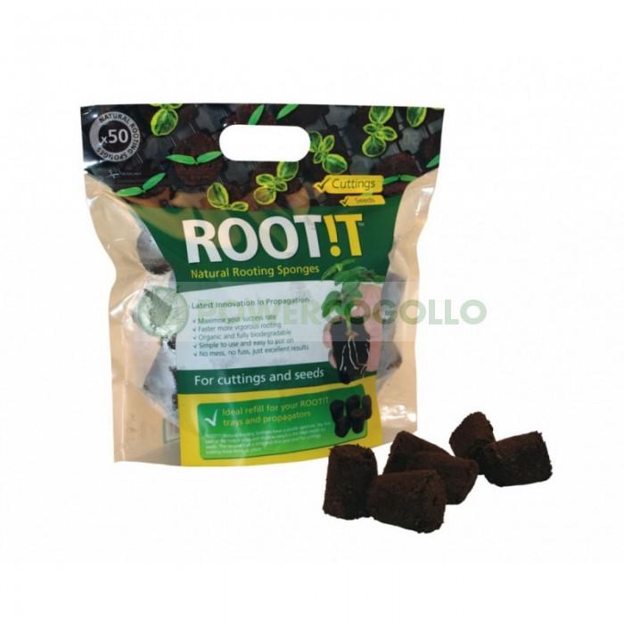 Tacos Root!t enraizamiento (50unid)