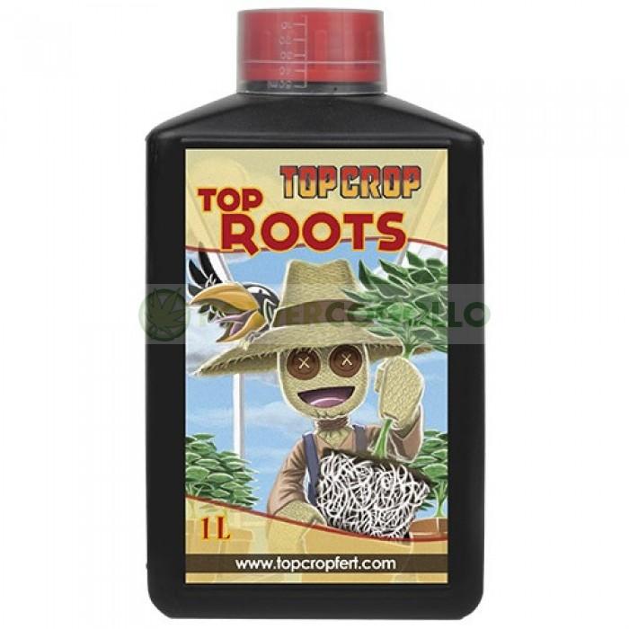 Top Roots (Top Crop)