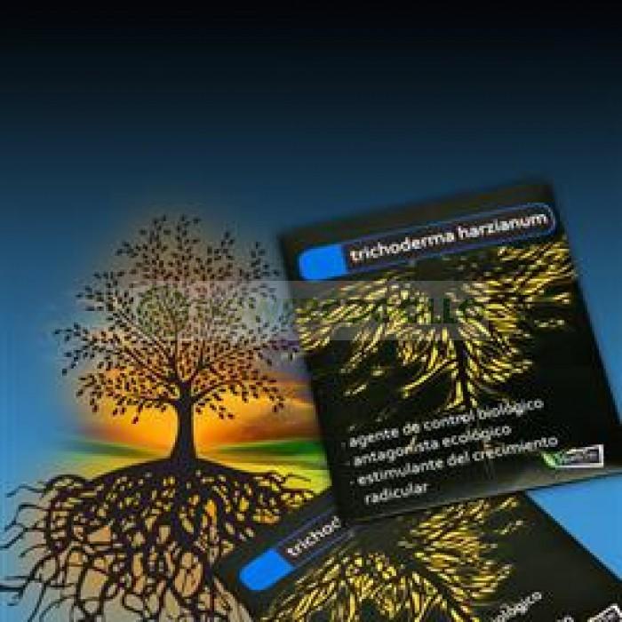 Trichoderma Harzianum Hongo Beneficioso para las Raíces