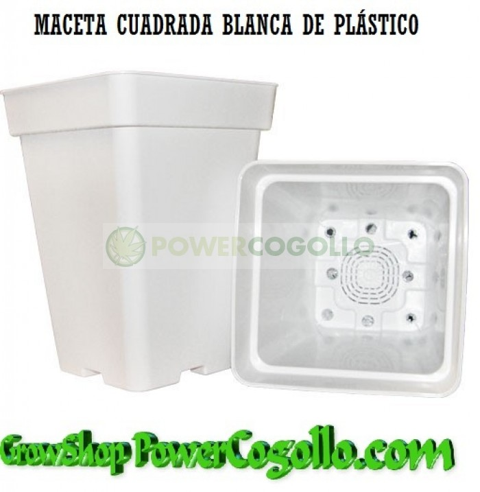 Maceta Blanca Cuadrada (5,5 Lt)